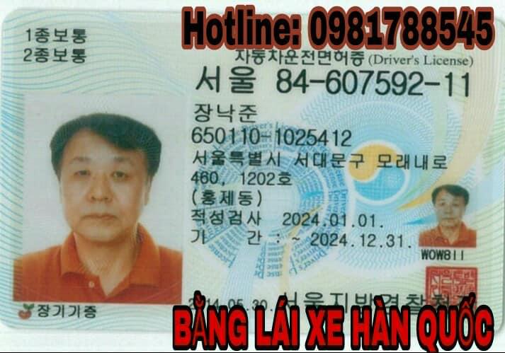 đổi bằng lái xe nước ngoài sang Việt Nam
